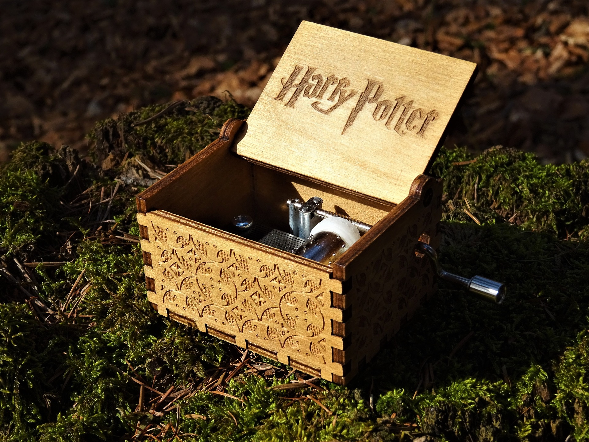 Harry Potter Quiz Questions and Answers: You're a Wizard
